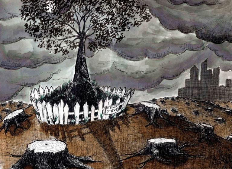 Kelly Halpin Art - Last Tree